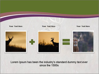 Deer PowerPoint Templates - Slide 22
