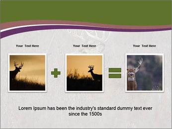Deer PowerPoint Template - Slide 22