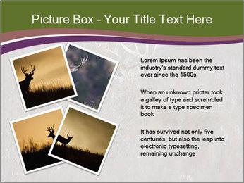 Deer PowerPoint Template - Slide 23