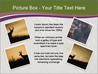Deer PowerPoint Template - Slide 24