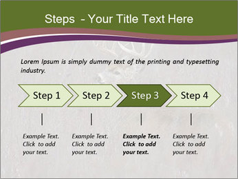 Deer PowerPoint Templates - Slide 4