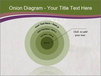 Deer PowerPoint Template - Slide 61