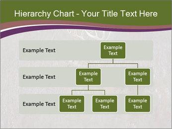 Deer PowerPoint Template - Slide 67