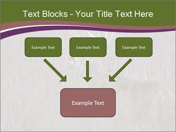 Deer PowerPoint Template - Slide 70
