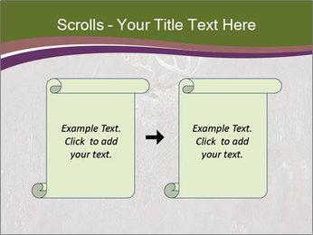 Deer PowerPoint Template - Slide 74