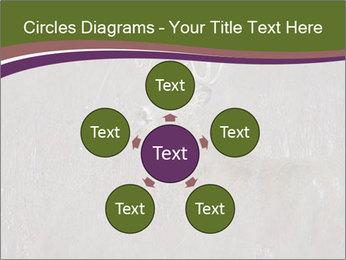 Deer PowerPoint Template - Slide 78