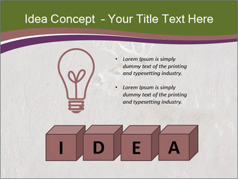 Deer PowerPoint Templates - Slide 80