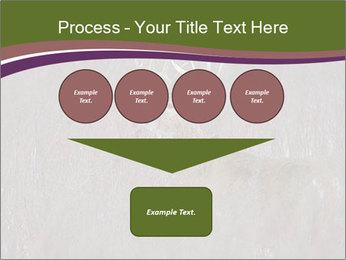 Deer PowerPoint Template - Slide 93