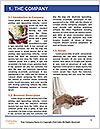 0000092640 Word Templates - Page 3