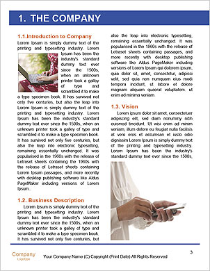 0000092640 Word Template - Page 3