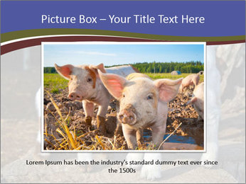 Baby Goats PowerPoint Templates - Slide 16