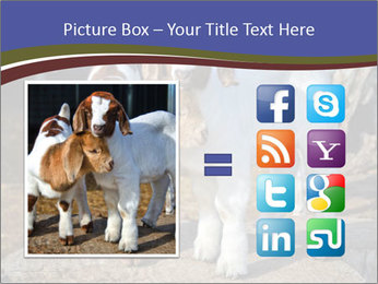 Baby Goats PowerPoint Templates - Slide 21