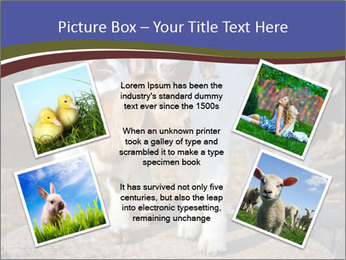Baby Goats PowerPoint Templates - Slide 24