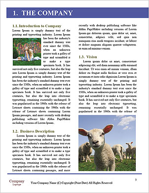 0000092644 Word Template - Page 3