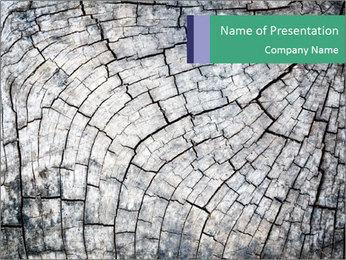 Wood detail PowerPoint Template - Slide 1