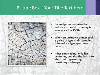 Wood detail PowerPoint Templates - Slide 13