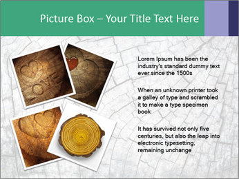 Wood detail PowerPoint Template - Slide 23