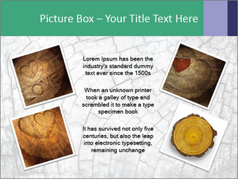 Wood detail PowerPoint Templates - Slide 24