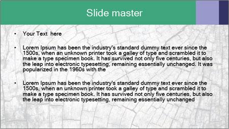 Wood detail PowerPoint Template - Slide 2