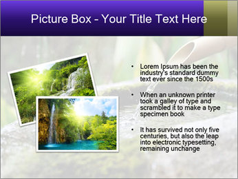 Japanese cho-zu PowerPoint Template - Slide 20