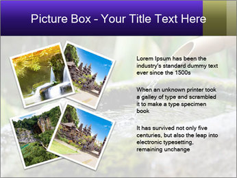Japanese cho-zu PowerPoint Template - Slide 23