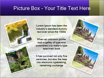 Japanese cho-zu PowerPoint Template - Slide 24