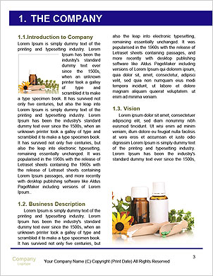 0000092663 Word Template - Page 3