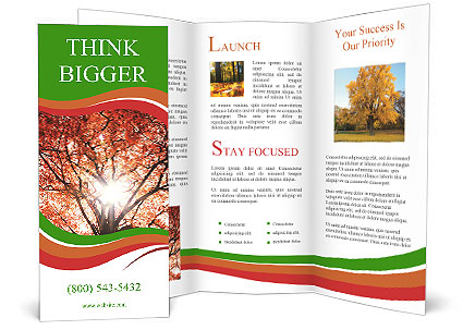 0000092671 Brochure Template