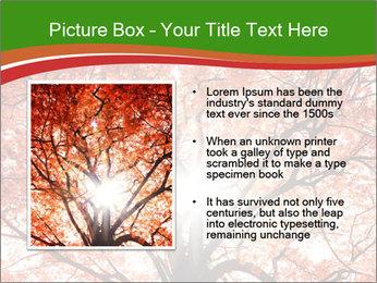 Tree autumn. PowerPoint Template - Slide 13