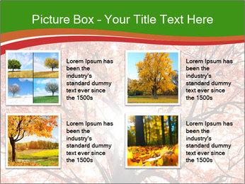 Tree autumn. PowerPoint Template - Slide 14