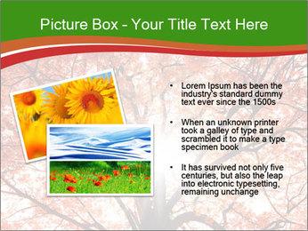 Tree autumn. PowerPoint Template - Slide 20