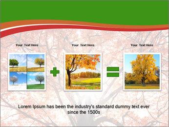 Tree autumn. PowerPoint Template - Slide 22