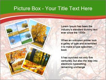 Tree autumn. PowerPoint Template - Slide 23