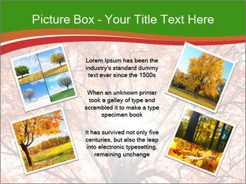 Tree autumn. PowerPoint Template - Slide 24