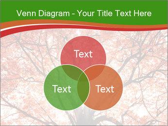 Tree autumn. PowerPoint Template - Slide 33