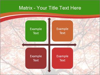 Tree autumn. PowerPoint Template - Slide 37