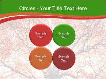 Tree autumn. PowerPoint Template - Slide 38