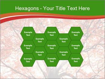 Tree autumn. PowerPoint Template - Slide 44