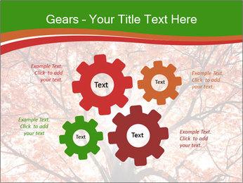 Tree autumn. PowerPoint Template - Slide 47