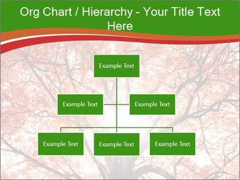 Tree autumn. PowerPoint Template - Slide 66