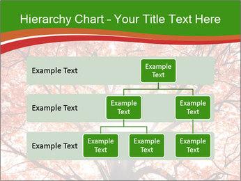 Tree autumn. PowerPoint Template - Slide 67