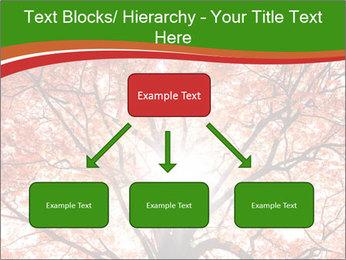 Tree autumn. PowerPoint Template - Slide 69