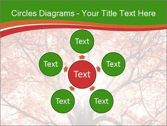 Tree autumn. PowerPoint Template - Slide 78