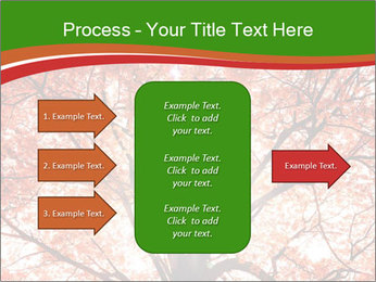 Tree autumn. PowerPoint Template - Slide 85