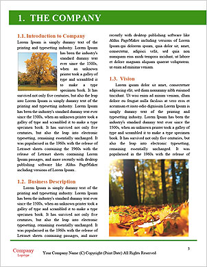 0000092671 Word Template - Page 3
