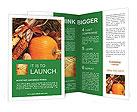 0000092674 Brochure Template