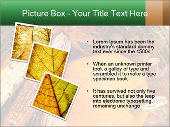 A colorful orange pumpkin PowerPoint Template - Slide 17