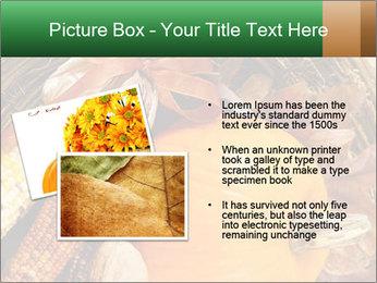 A colorful orange pumpkin PowerPoint Template - Slide 20