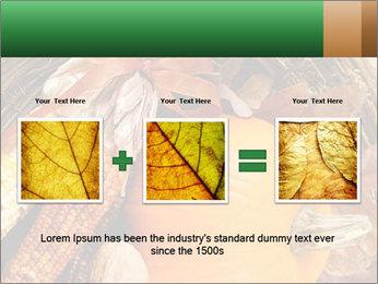 A colorful orange pumpkin PowerPoint Template - Slide 22