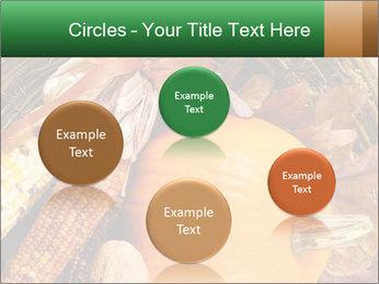 A colorful orange pumpkin PowerPoint Template - Slide 77